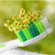 tecnologia-bioceramica-2