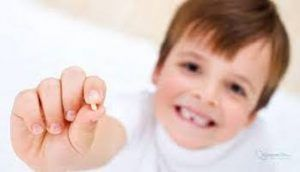 dientes-leche-1